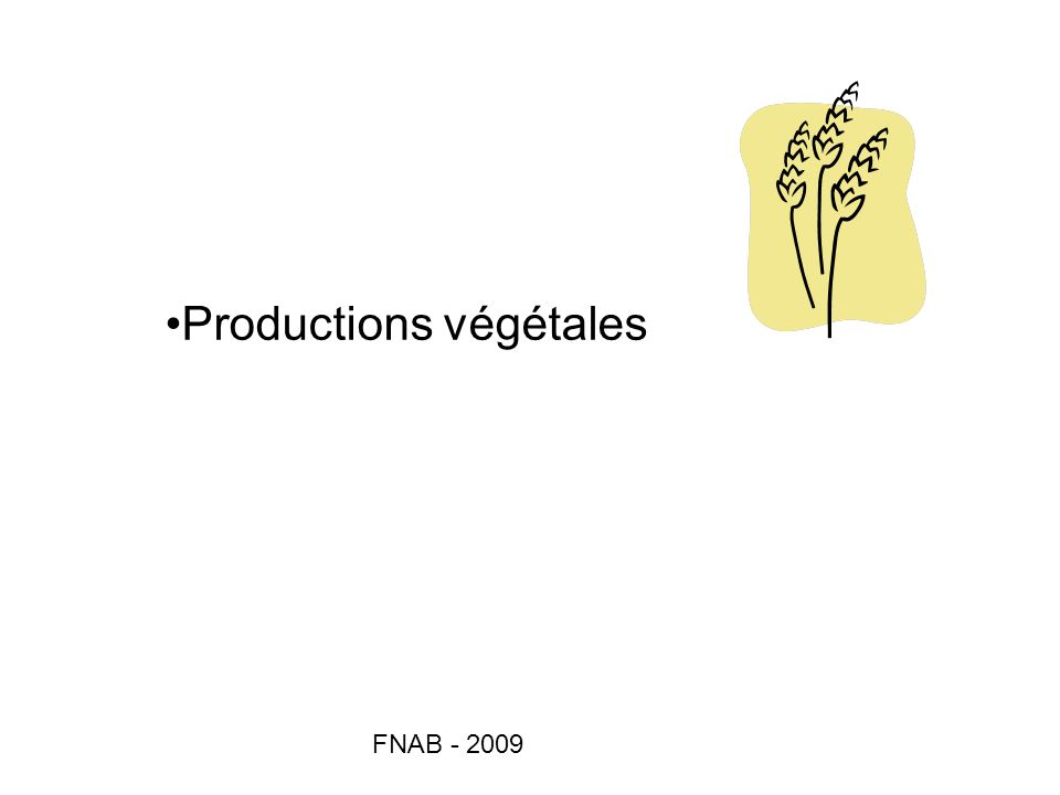 Productions végétales