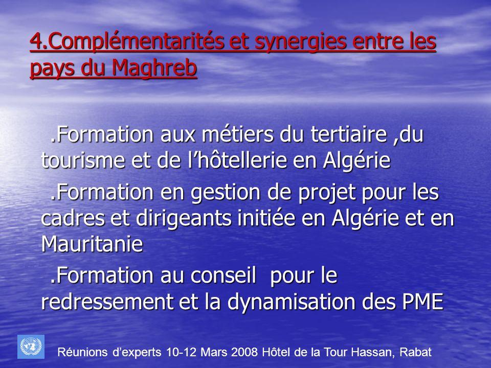 4.Complémentarités et synergies entre les pays du Maghreb