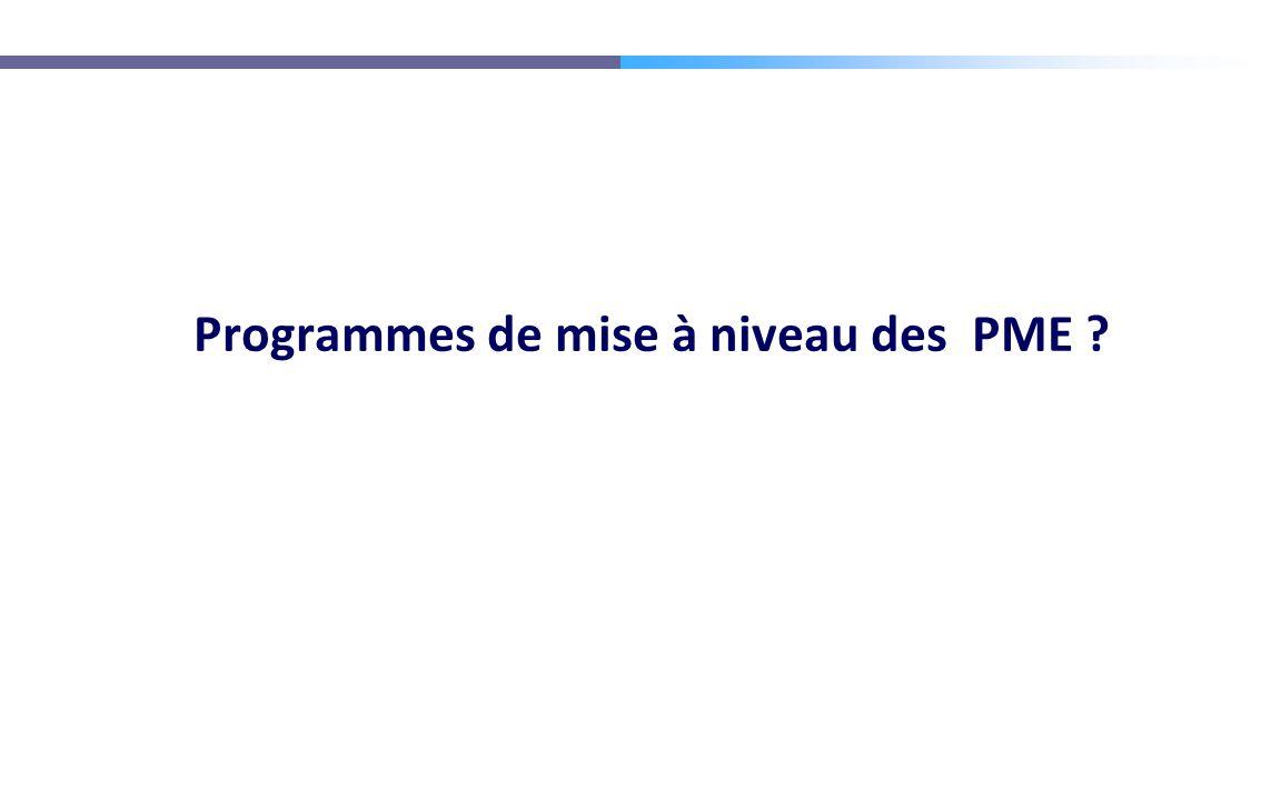 Programmes de mise à niveau des PME