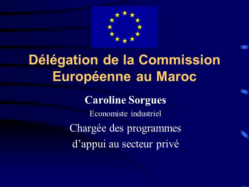 Délégation de la Commission Européenne au Maroc