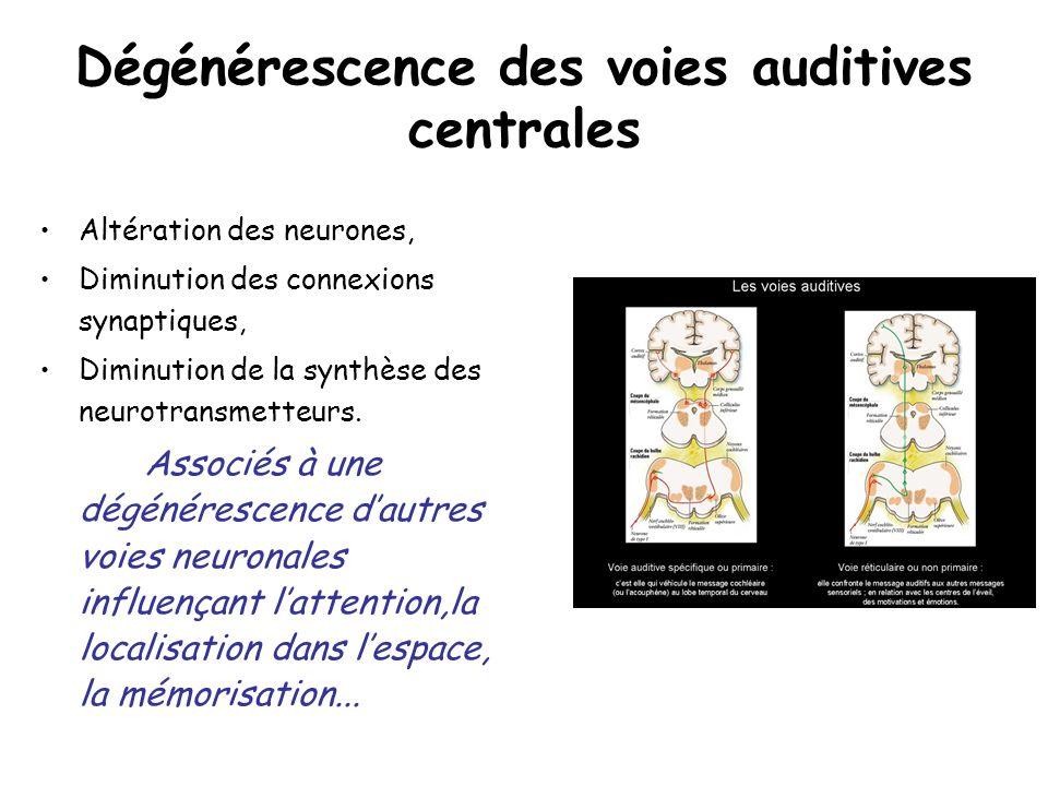 Dégénérescence des voies auditives centrales