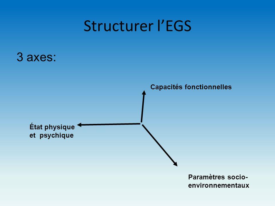 Structurer l'EGS 3 axes: Capacités fonctionnelles État physique