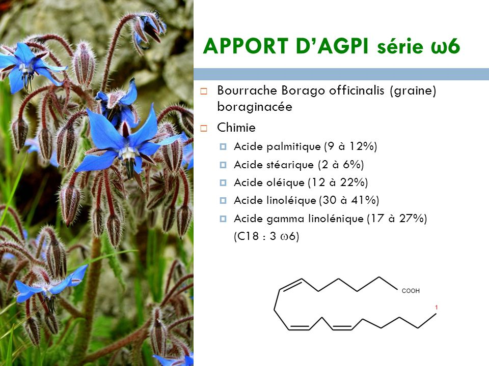 APPORT D'AGPI série ω6 Bourrache Borago officinalis (graine) boraginacée. Chimie. Acide palmitique (9 à 12%)