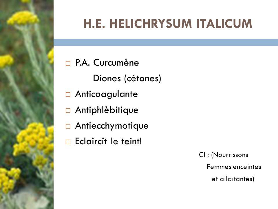 H.E. HELICHRYSUM ITALICUM