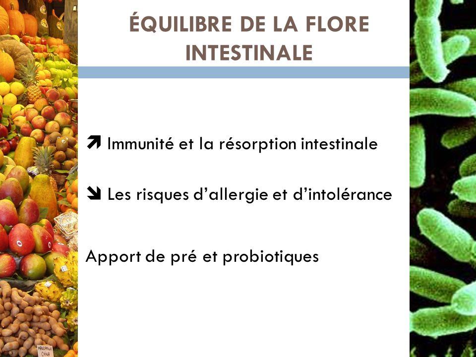 ÉQUILIBRE DE LA FLORE INTESTINALE