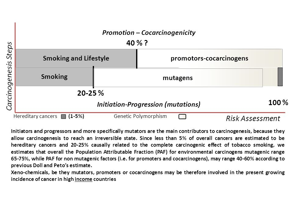 Carcinogenesis Steps 40 % 20-25 % Risk Assessment 100 %