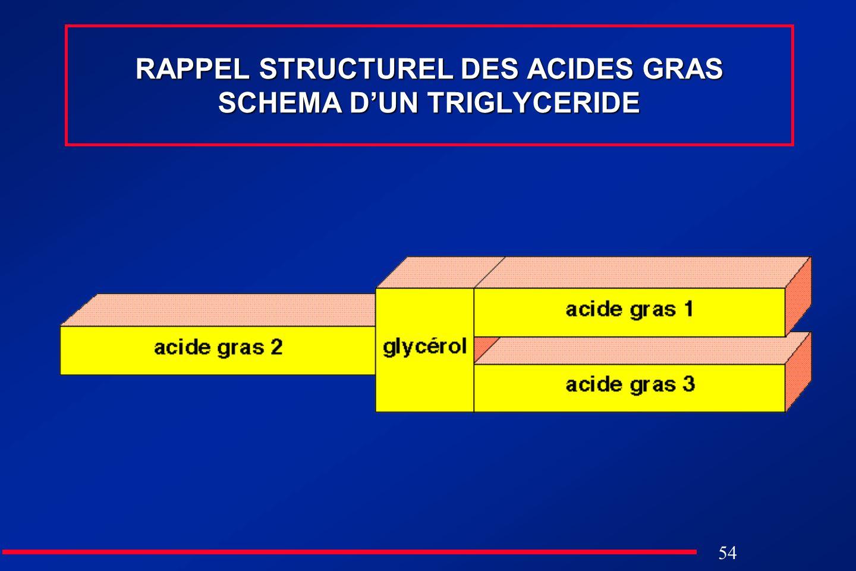 RAPPEL STRUCTUREL DES ACIDES GRAS SCHEMA D'UN TRIGLYCERIDE