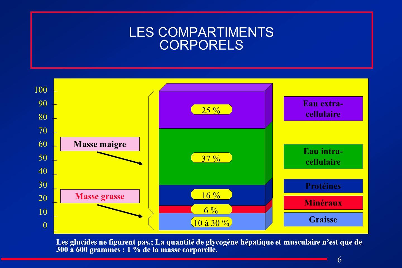 LES COMPARTIMENTS CORPORELS
