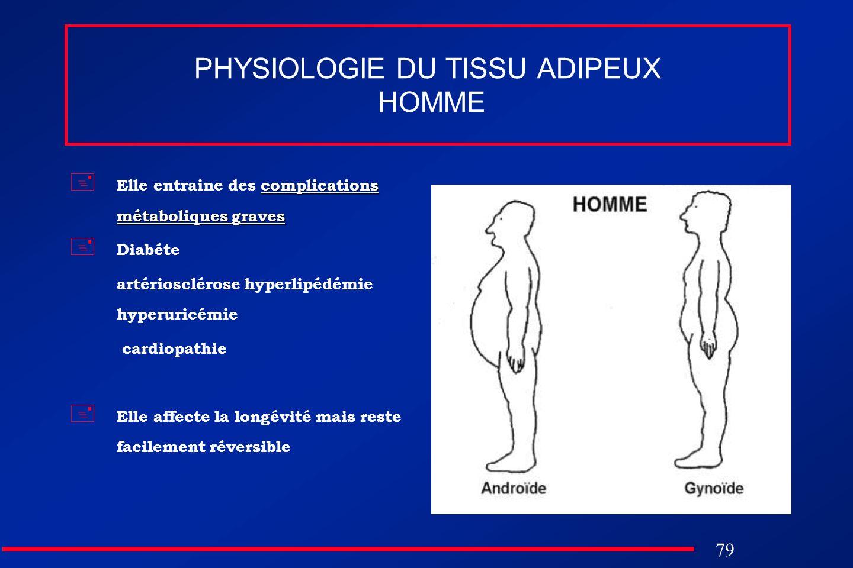 PHYSIOLOGIE DU TISSU ADIPEUX HOMME
