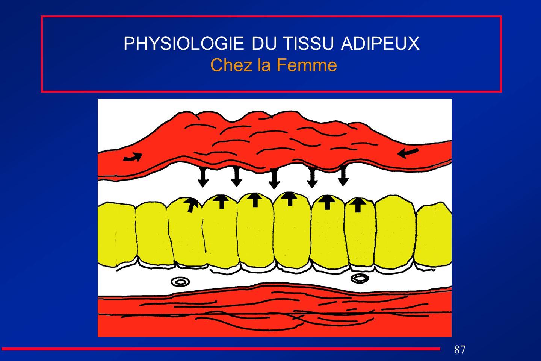 PHYSIOLOGIE DU TISSU ADIPEUX Chez la Femme