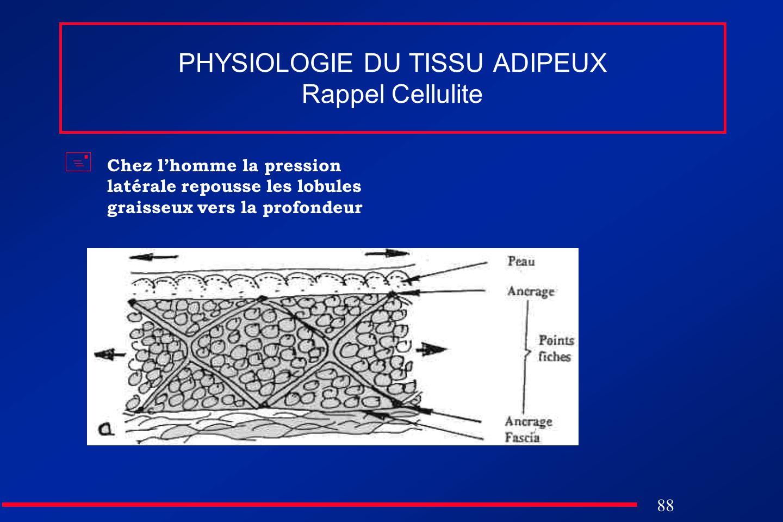 PHYSIOLOGIE DU TISSU ADIPEUX Rappel Cellulite