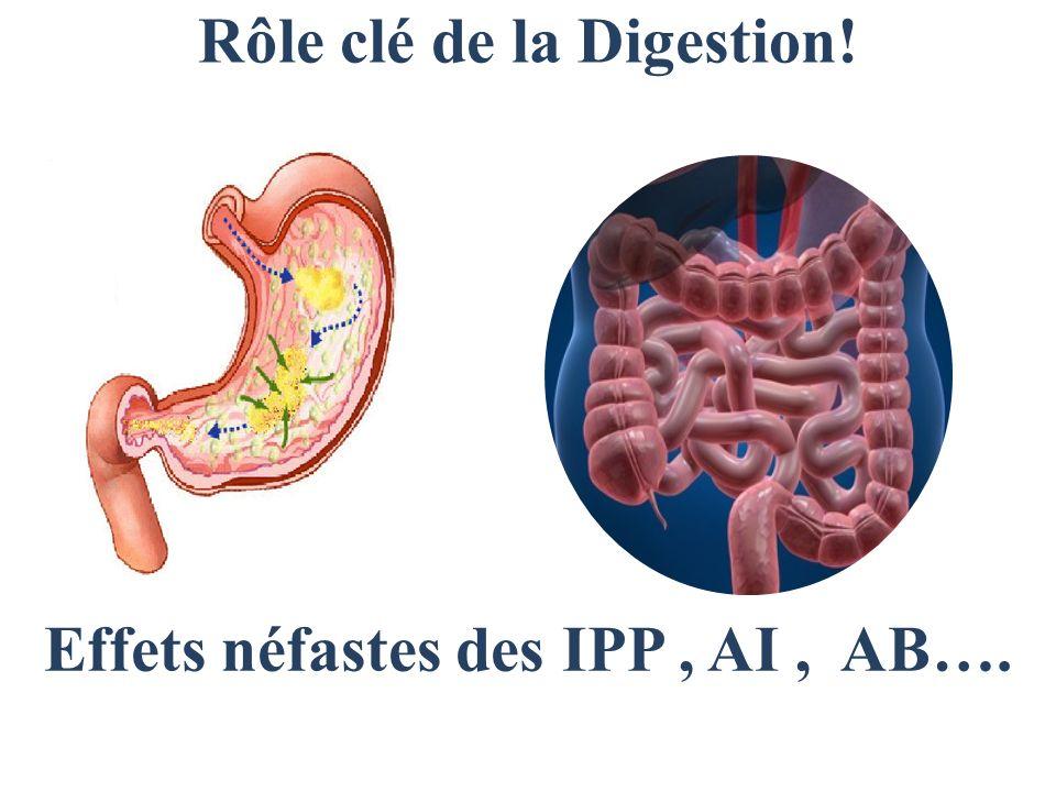 Rôle clé de la Digestion! Effets néfastes des IPP , AI , AB….