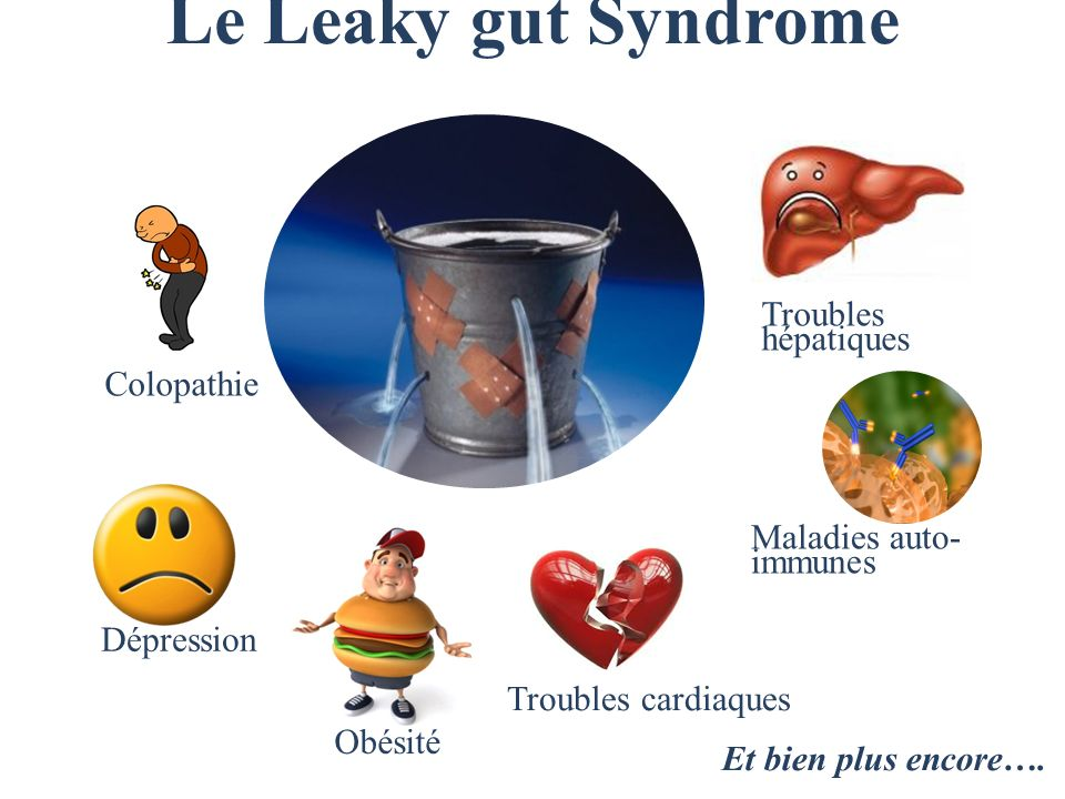 Le Leaky gut Syndrome Troubles hépatiques Colopathie