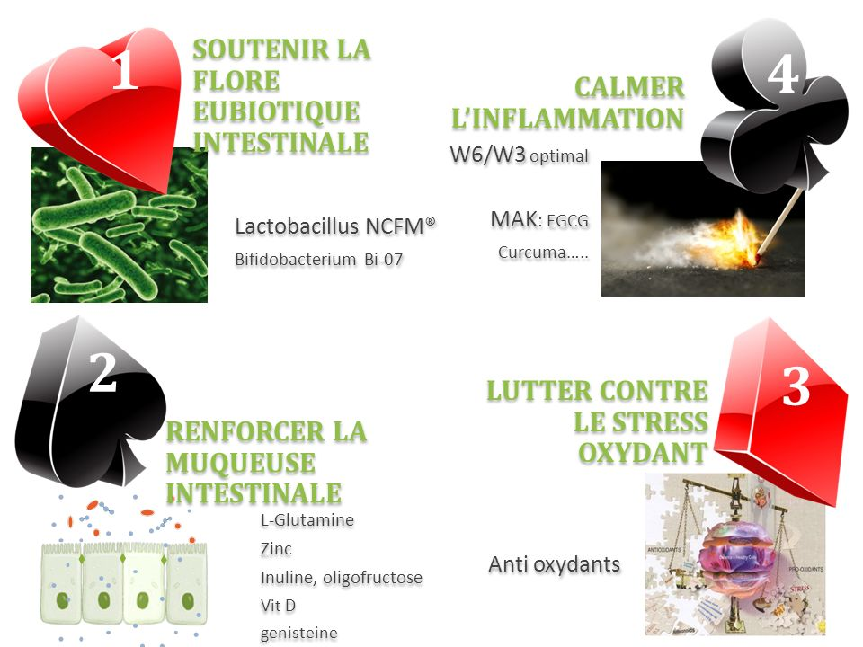 1 4 2 3 SOUTENIR LA FLORE EUBIOTIQUE INTESTINALE CALMER L'INFLAMMATION