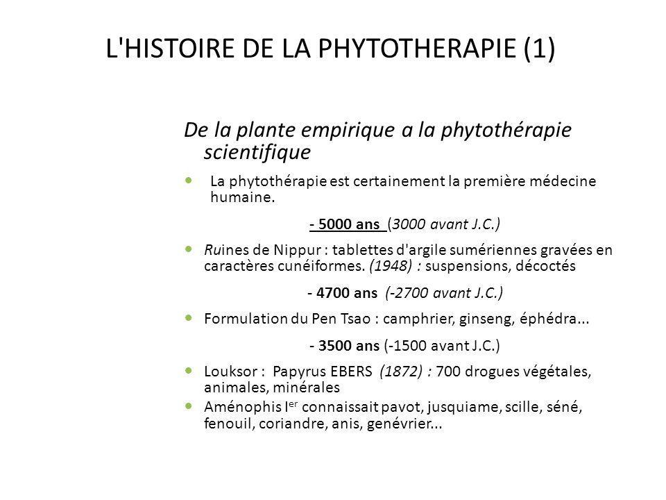 L HISTOIRE DE LA PHYTOTHERAPIE (1)