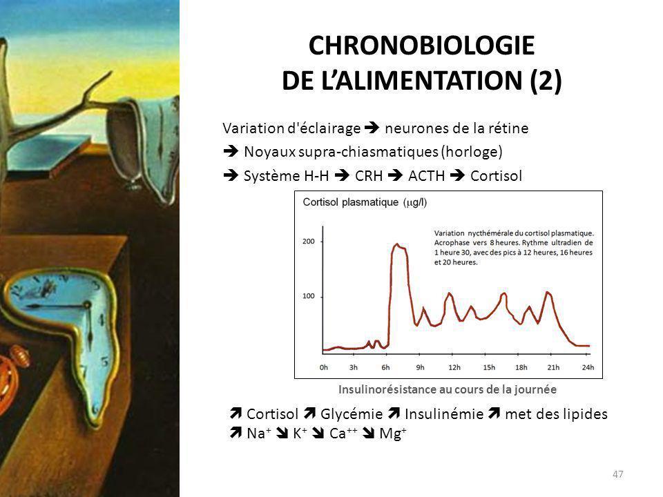 CHRONOBIOLOGIE DE L'ALIMENTATION (2)