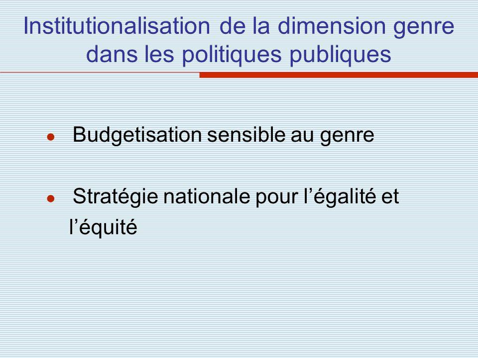 Institutionalisation de la dimension genre dans les politiques publiques