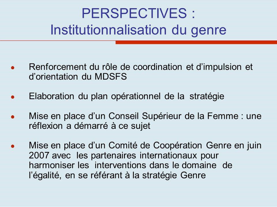 PERSPECTIVES : Institutionnalisation du genre