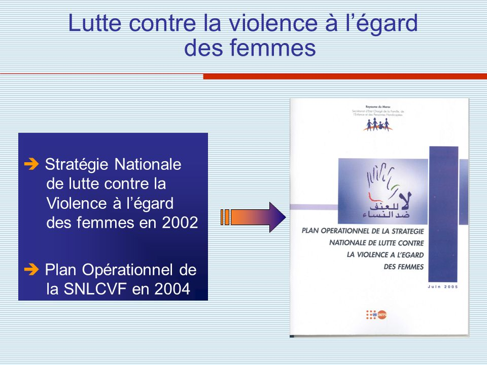 Lutte contre la violence à l'égard des femmes