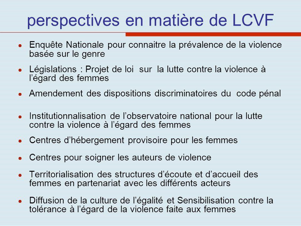 perspectives en matière de LCVF