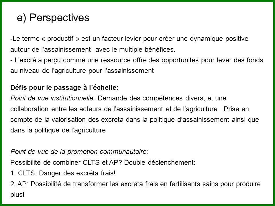 e) Perspectives