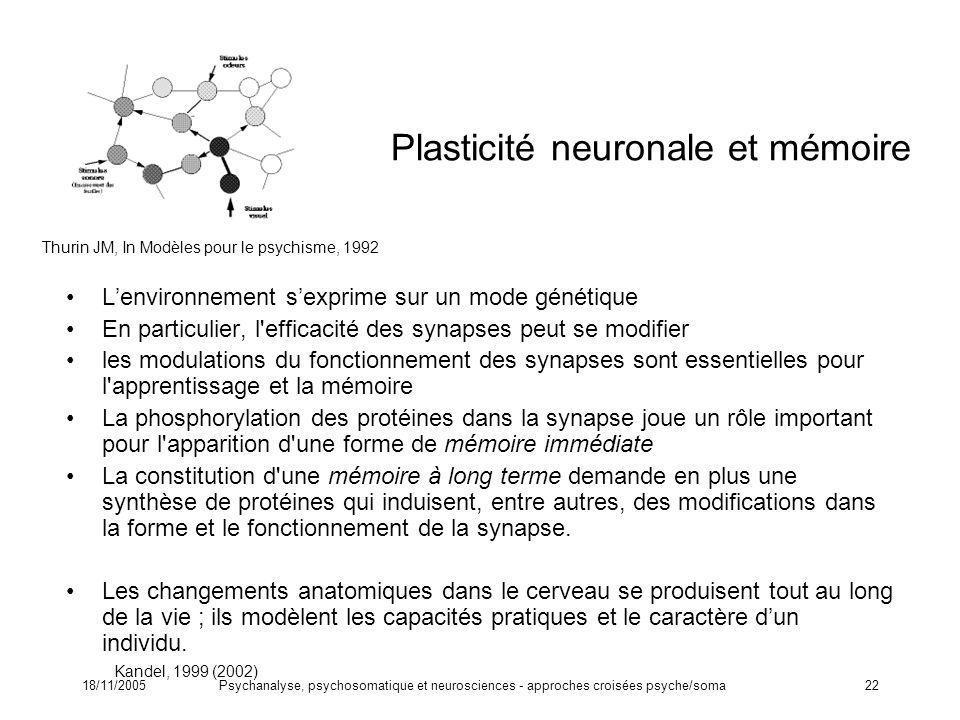 Plasticité neuronale et mémoire