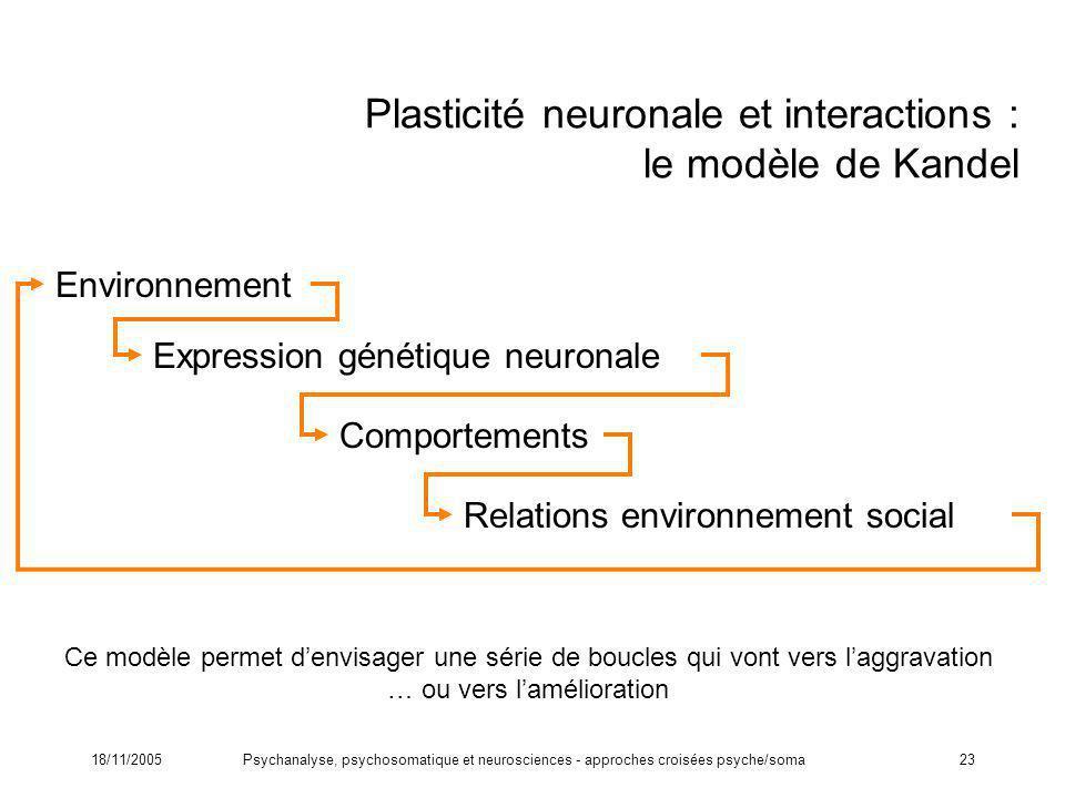 Plasticité neuronale et interactions : le modèle de Kandel