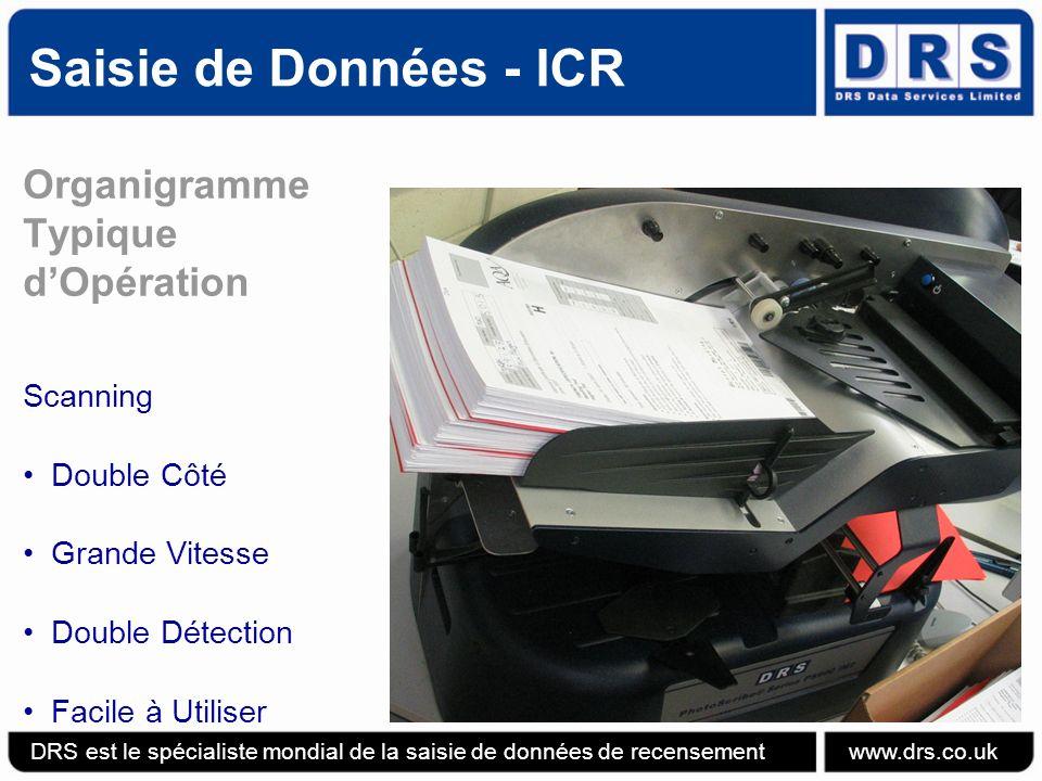 Saisie de Données - ICR Organigramme Typique d'Opération Scanning