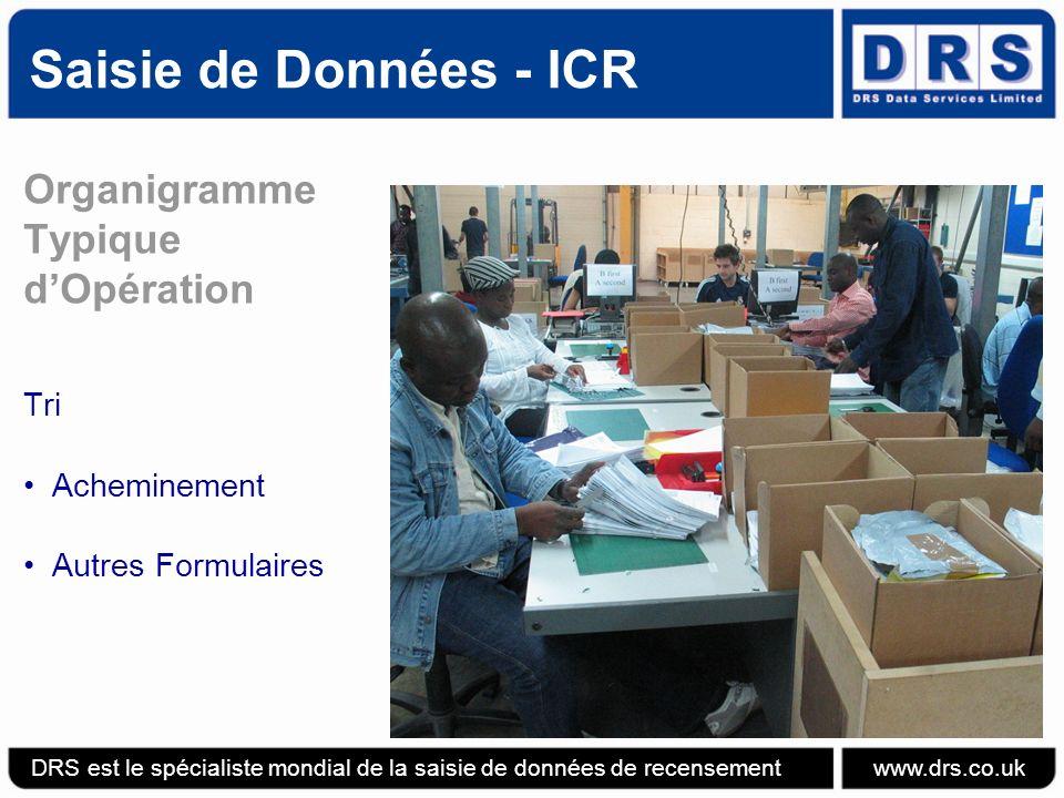 Saisie de Données - ICR Organigramme Typique d'Opération Tri