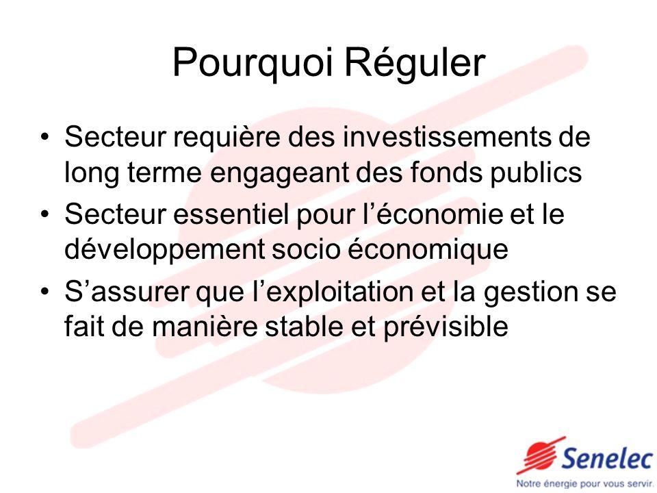 Pourquoi Réguler Secteur requière des investissements de long terme engageant des fonds publics.