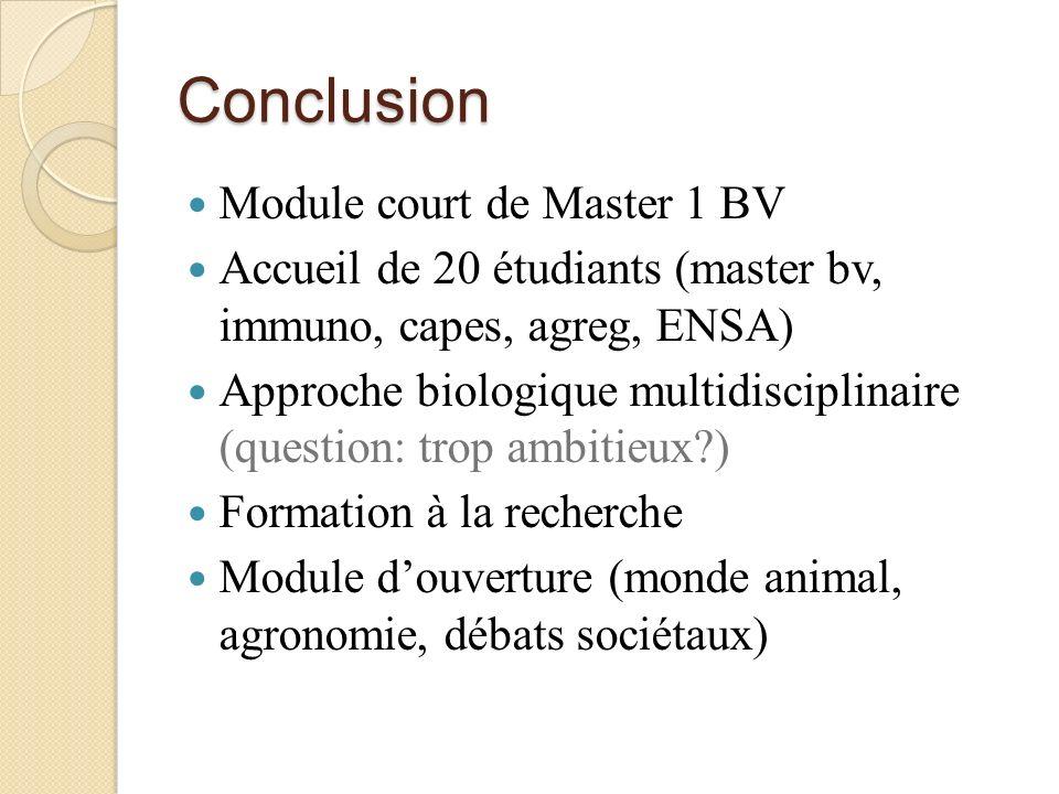 Conclusion Module court de Master 1 BV