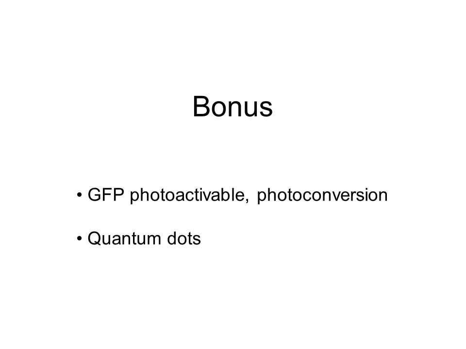 GFP photoactivable, photoconversion Quantum dots