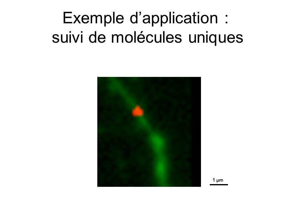 Exemple d'application : suivi de molécules uniques