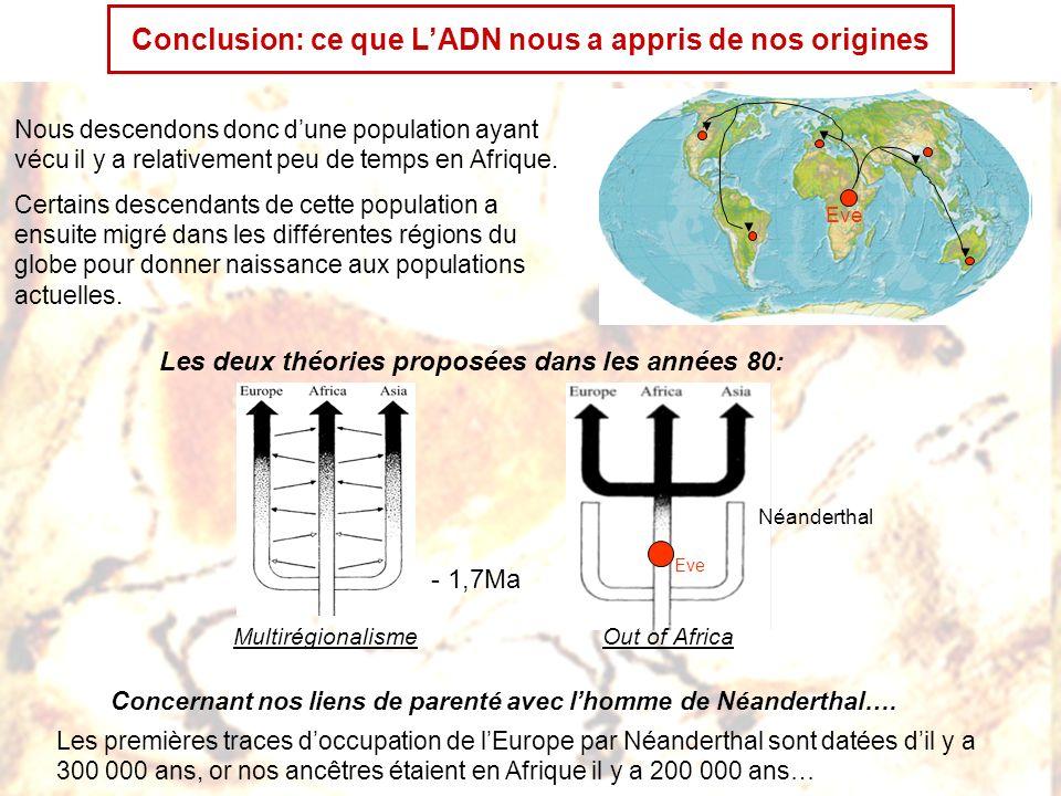 Conclusion: ce que L'ADN nous a appris de nos origines