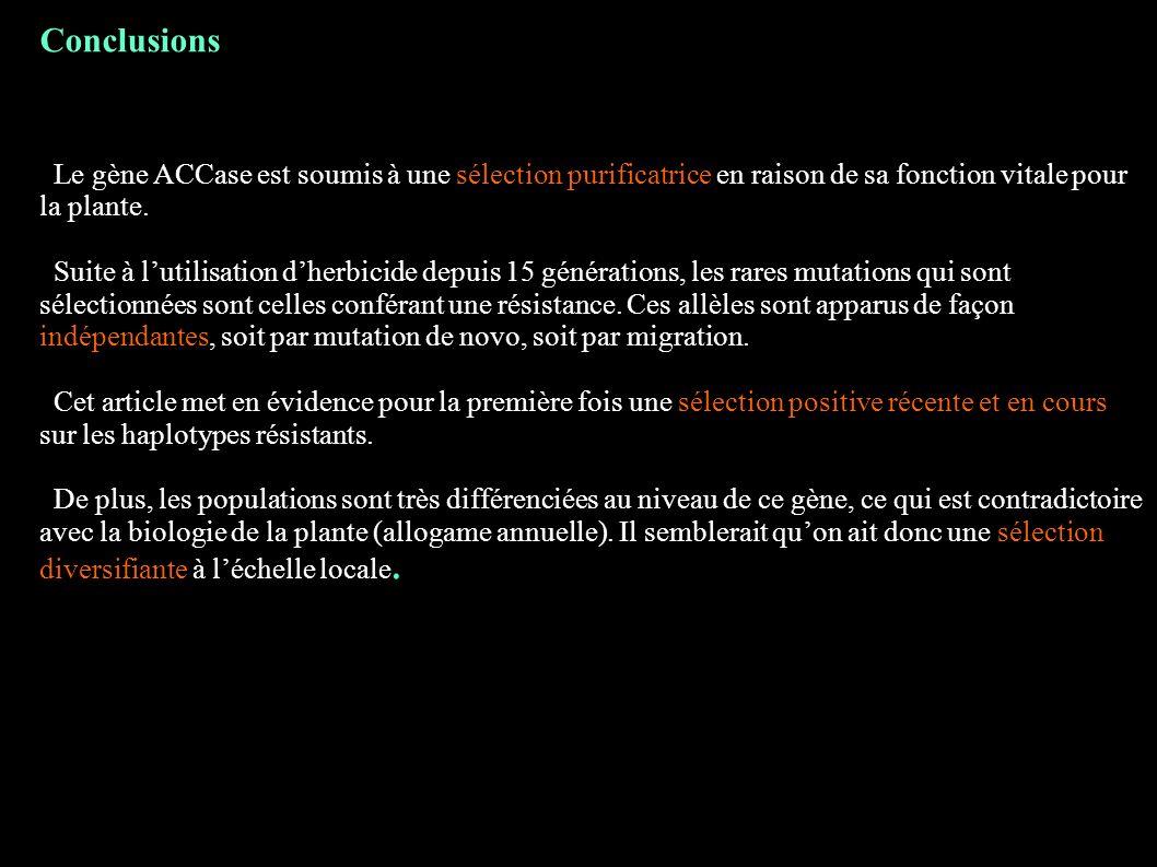 Conclusions Le gène ACCase est soumis à une sélection purificatrice en raison de sa fonction vitale pour la plante.