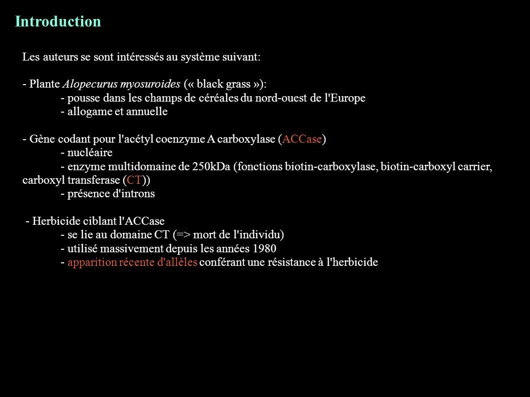 Introduction Les auteurs se sont intéressés au système suivant: