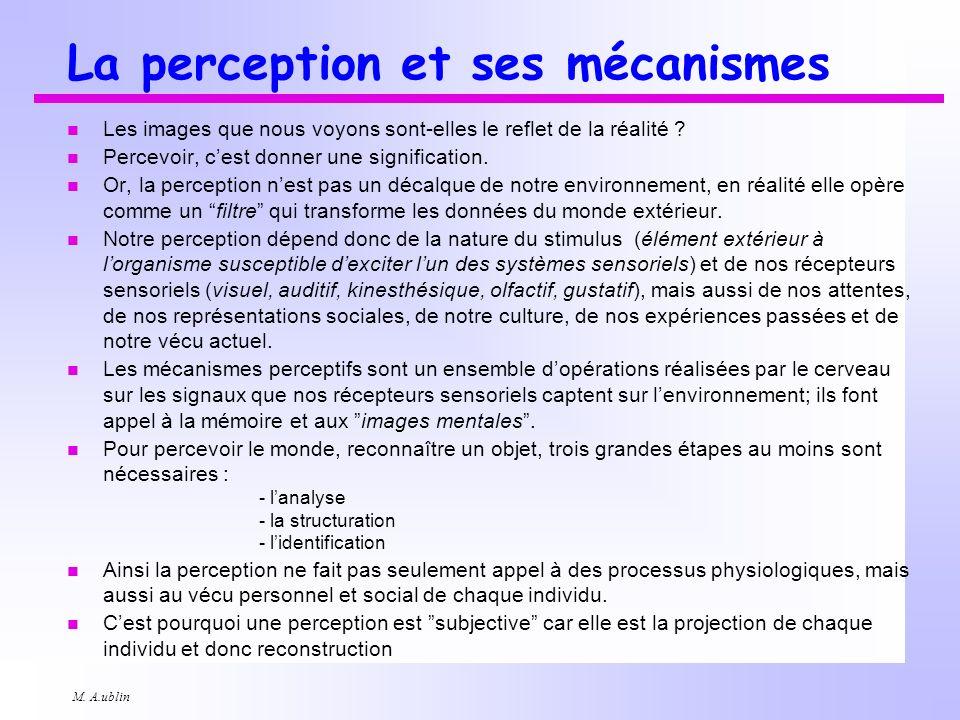La perception et ses mécanismes
