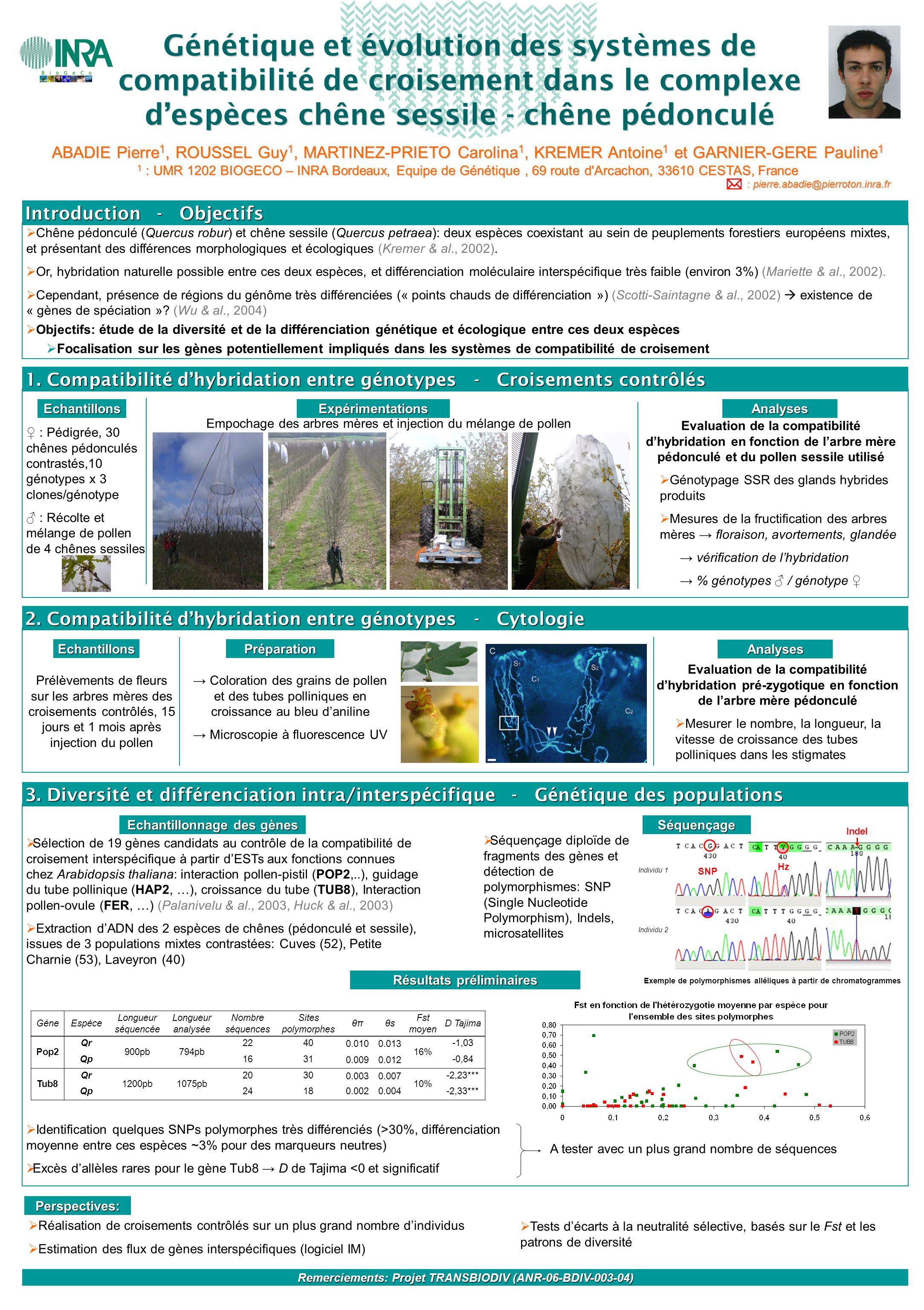 Génétique et évolution des systèmes de compatibilité de croisement dans le complexe d'espèces chêne sessile - chêne pédonculé