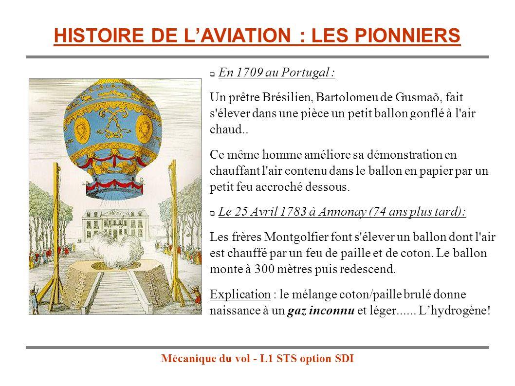 HISTOIRE DE L'AVIATION : LES PIONNIERS