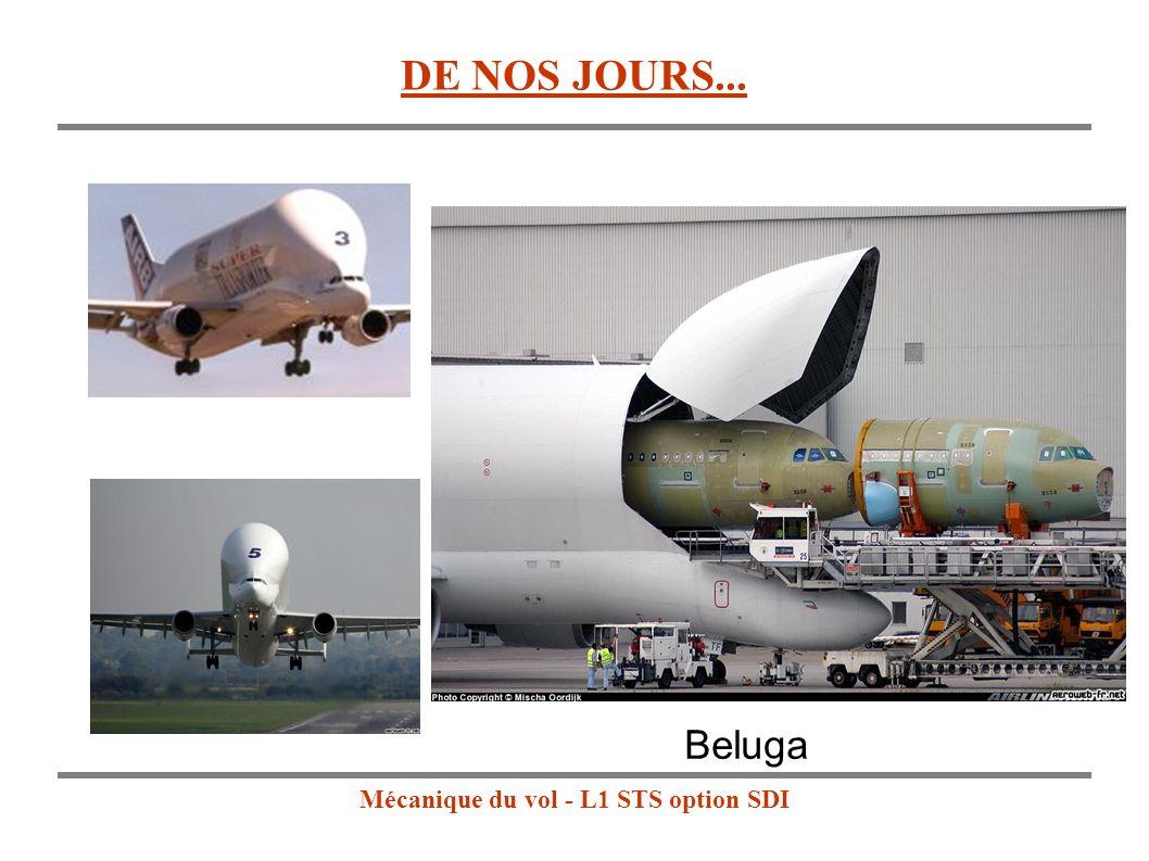 Mécanique du vol - L1 STS option SDI