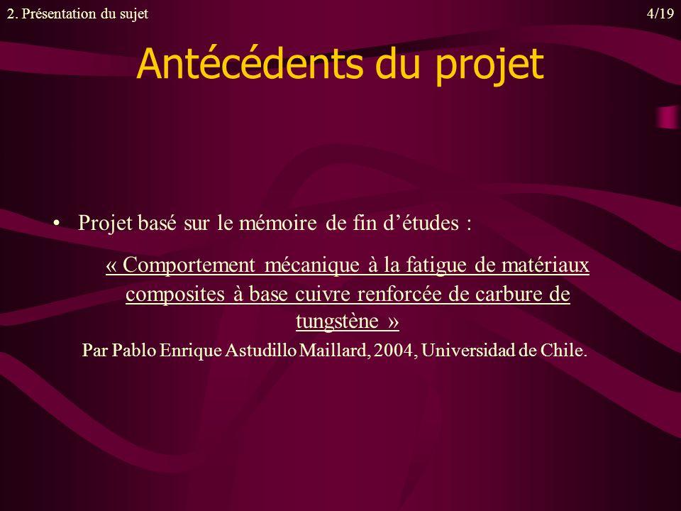 Par Pablo Enrique Astudillo Maillard, 2004, Universidad de Chile.