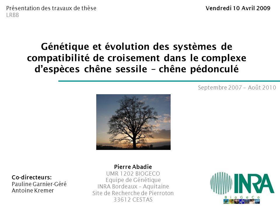 Présentation des travaux de thèse Vendredi 10 Avril 2009