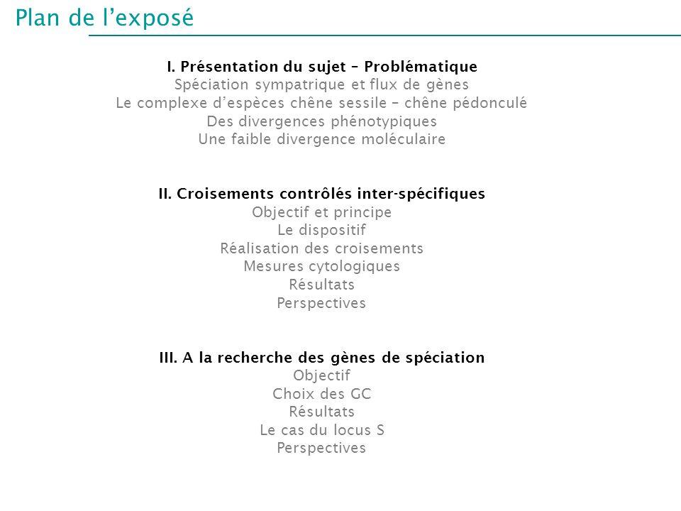 Plan de l'exposé I. Présentation du sujet – Problématique