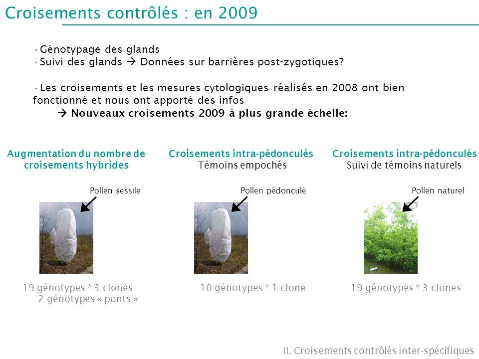 Croisements contrôlés : en 2009
