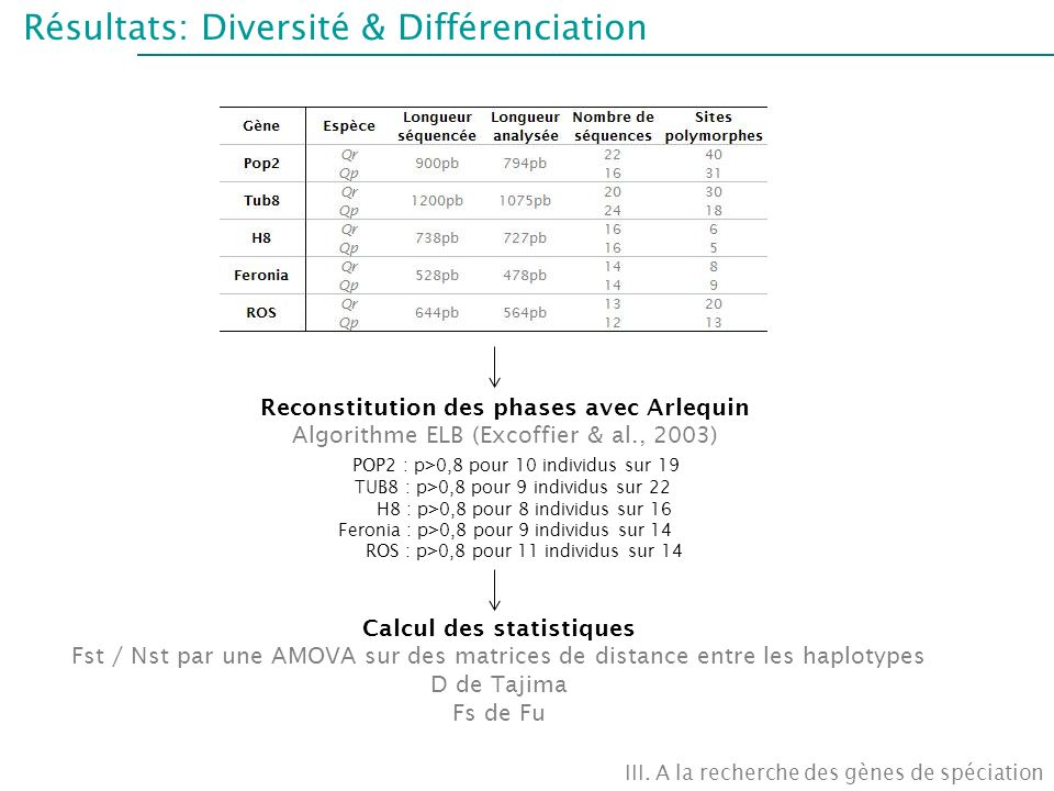 Reconstitution des phases avec Arlequin Calcul des statistiques