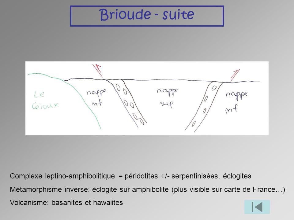 Brioude - suite Complexe leptino-amphibolitique = péridotites +/- serpentinisées, éclogites.