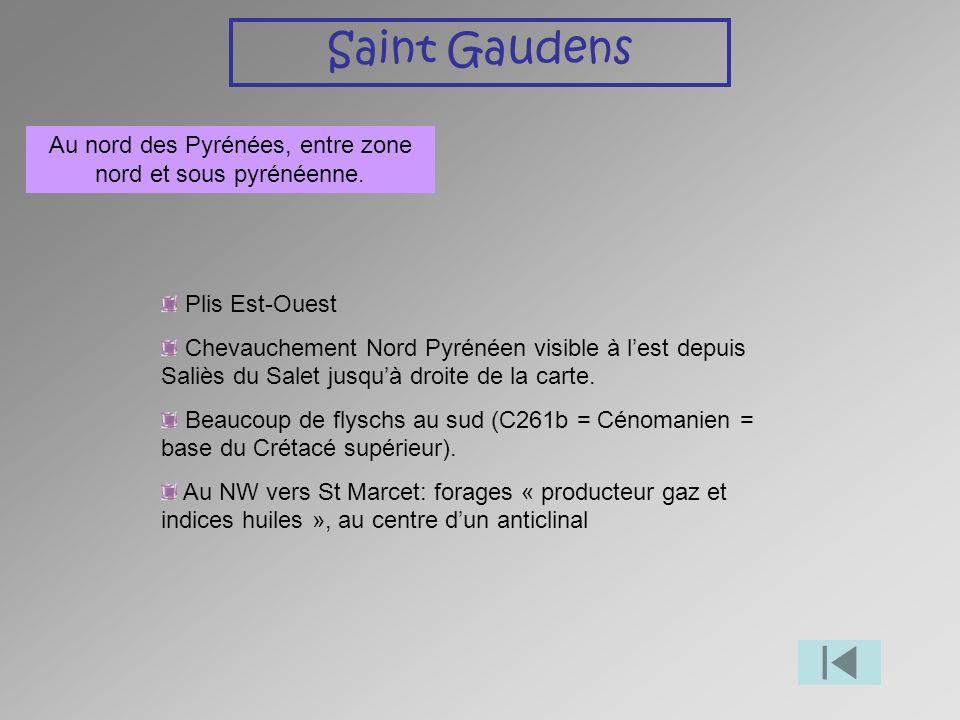 Au nord des Pyrénées, entre zone nord et sous pyrénéenne.