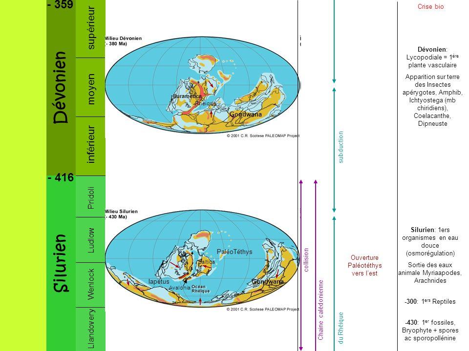 Dévonien Silurien - 359 - 416 supérieur moyen inférieur Pridoli Ludlow