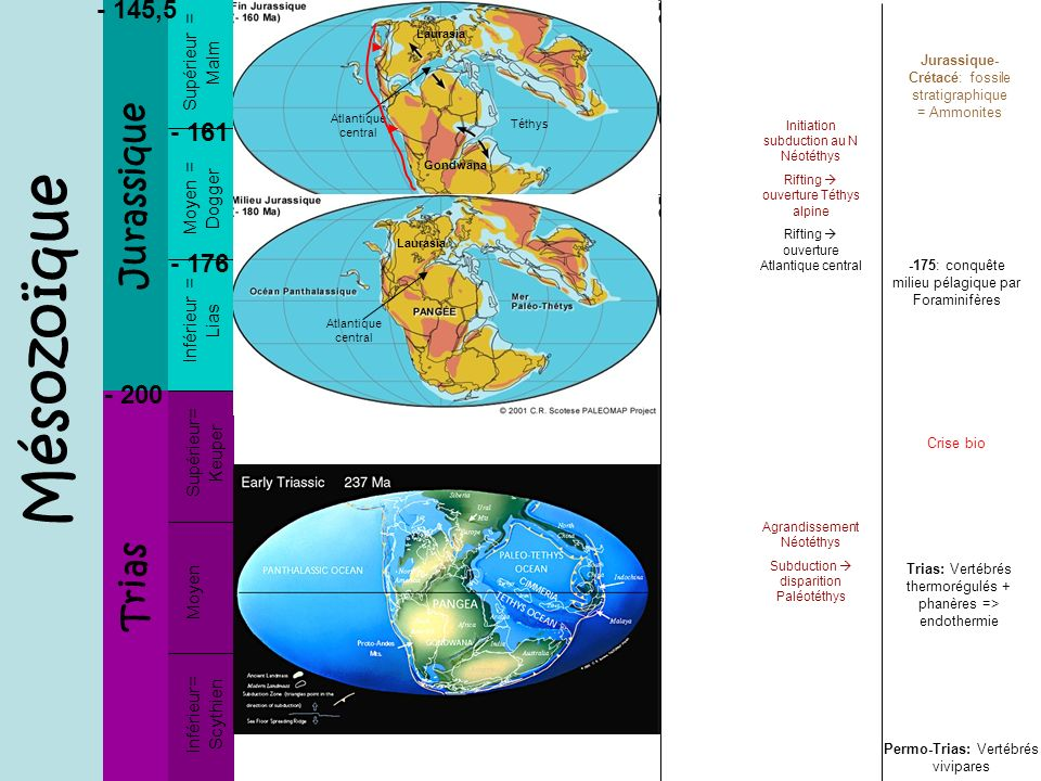 Mésozoïque Jurassique Trias - 145,5 - 161 - 176 - 200 Supérieur = Malm
