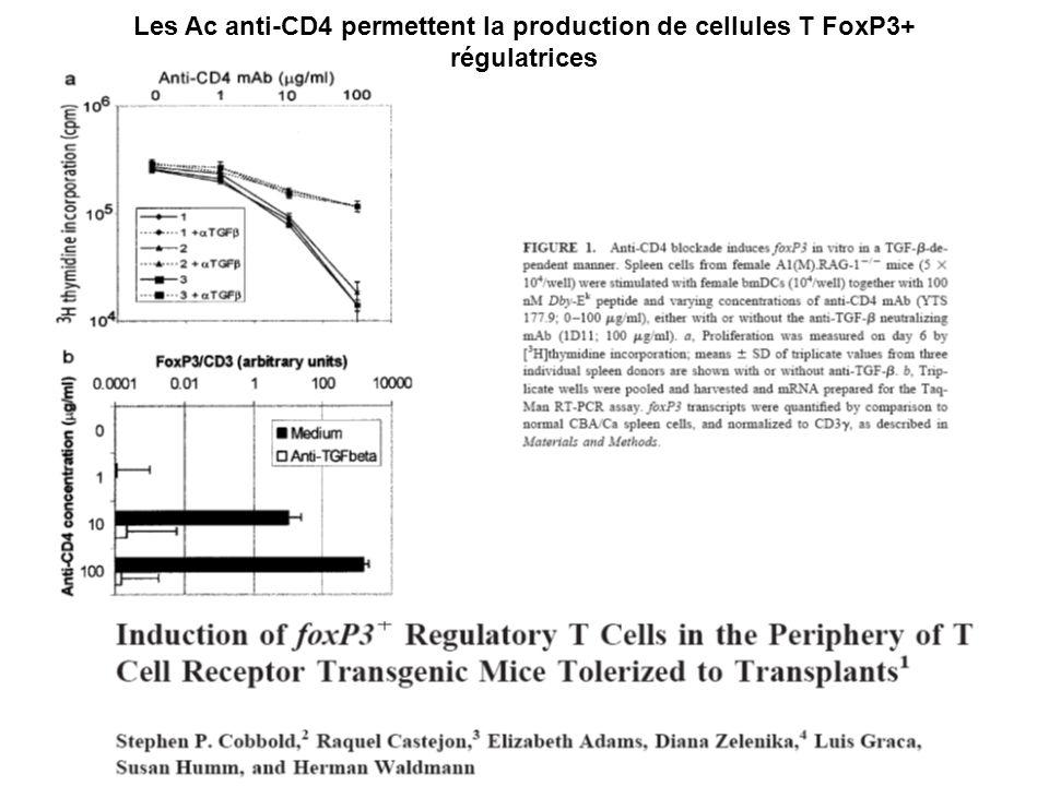 Les Ac anti-CD4 permettent la production de cellules T FoxP3+ régulatrices